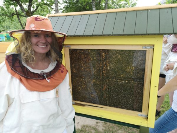 Glass beehive gives a chance for the guest to see life in the beehive from up close