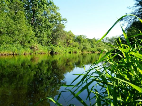 Minija River is well know for fishing and kayaking